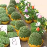 Wielkanoc, zakupy świąteczne, bazar [przebitki]