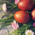 Zielone sposoby na Wielkanoc z dzieckiem